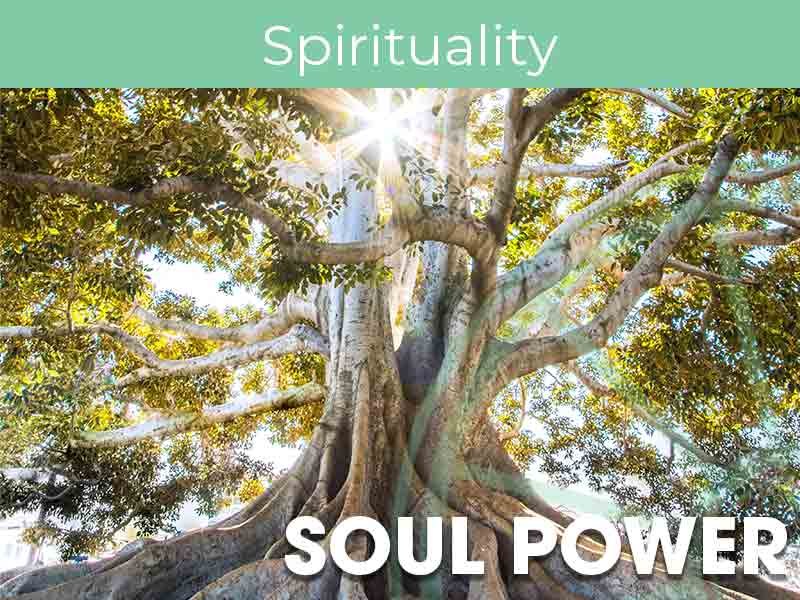 Soul Power Online with Julie Haines