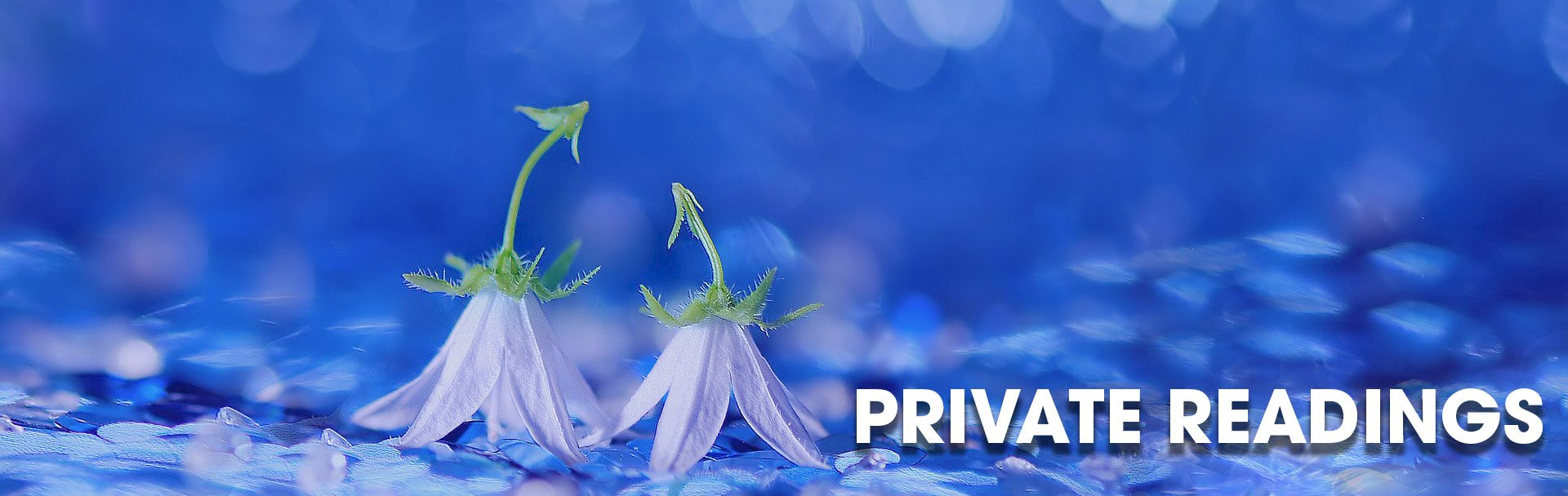 Private Mediumship and Psychic Readings