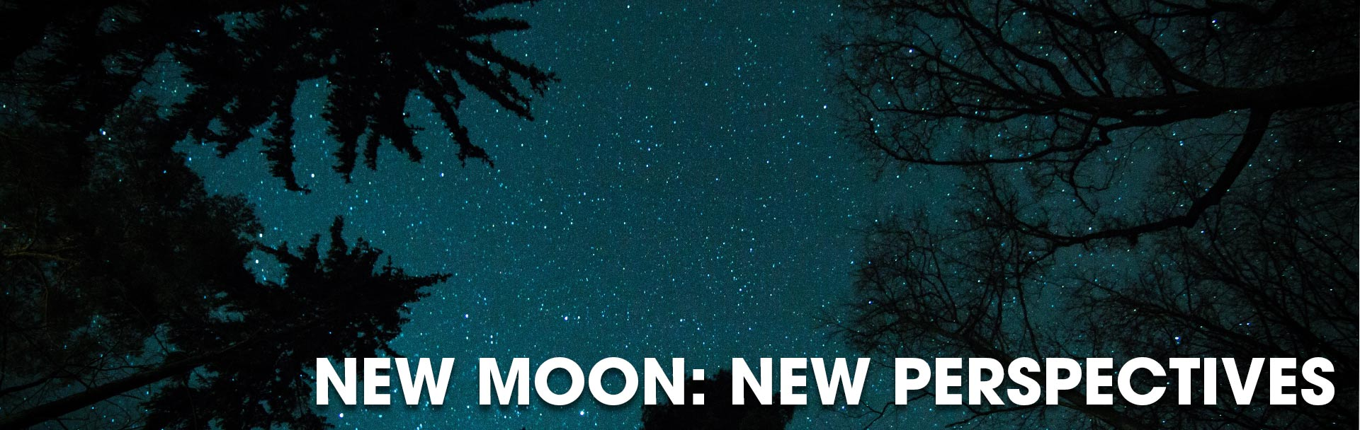 New Moon Workshop run by Joan Frew, Betty Jane Ware, Kat Wojdyla and Sophie O'Brien